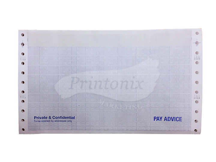 "Computer Form Pre-Printed Envelope Mailer Form - Payslip - 3 Ply 2 Up - 9.5"" x 11"" 500 Fans (1000 Sets)"